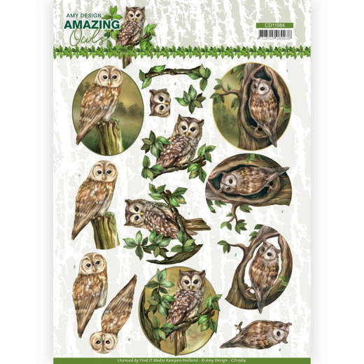 CD11564 3D Cutting Sheet - Amy Design - Amazing Owls - Forest Owls